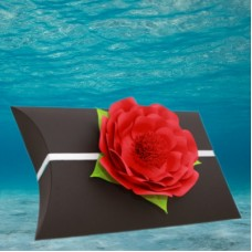 Black Voyager Urn with Red Memorial Petal